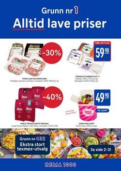 Tilbud fra Supermarkeder i Rema 1000-brosjyren ( Utløper i dag)