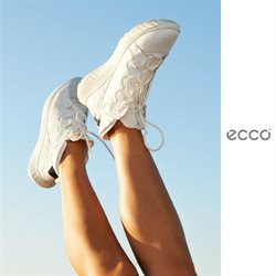 Ecco-katalog ( Mer enn 30 dager )
