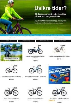 Birk Sport-katalog ( Utløpt )