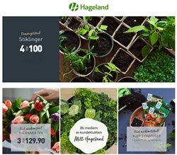 Hageland-katalog ( 2 dager siden )