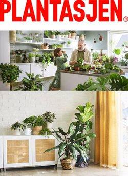 Tilbud på Hjem og møbler i Plantasjen-katalogen i Moss ( Utløper i morgen )