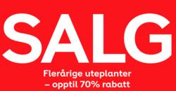 Tilbud fra Plantasjen i Oslo-brosjyren