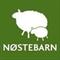 Logo Nøstebarn